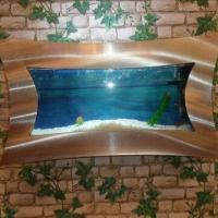 Buy cheap Wall Aquarium, Concave Brushed Aluminum from wholesalers