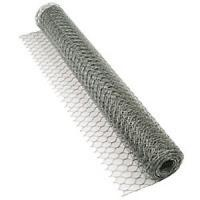 Cheap 25mm Hole Size Chicken Wire Mesh with 20 guage wire used in garden wholesale