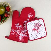 Cheap Christmas Theme Highly Recommend Kitchen Cooking Pot Holder and Oven Mitten Glove for sale