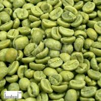 Cheap Green Coffee Bean Extract Powder for sale