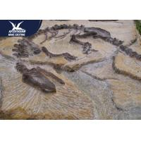 Buy cheap Big Indoor Decorative Fake Dinosaur Fossil Waterproof And Sunproof 1 Year Warranty from wholesalers