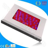 Cheap 600W LED Grow Light Ratiotailored for sale