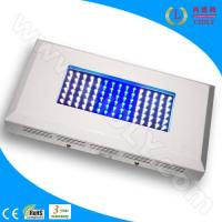 Cheap 90W Aquarium LED Light for Coral Reef for sale