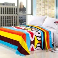 Cheap Twin Size Warm Micro Fiber Blanket Breathable For Family , Customized Picture Blankets wholesale