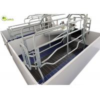 China 3600*2400 Galvanized Pig Limit Farrowing Bed PVC Board Gestation Nursery Pen on sale