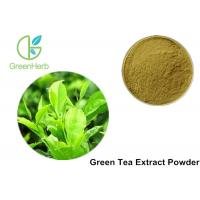 China 100% Organic Pure Green Tea Extract Powder Anti - Bacteria For Cosmetics / Food on sale