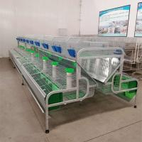 Cheap Hot-dip Galvanized Rabbit Poultry Farming Equipments Cheap Female Rabbit Battery Cage For Sale for sale