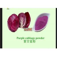 Cheap Red Cabbage Natural Vegetable Powder With Anti Radiation / Inflammation for sale