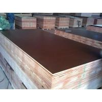 Cheap 15mm black browm red film faced shuttering plywood construction plywood for sale