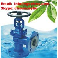 China DIN Right angle globe valve with bellows sealed on sale