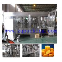 Cheap High Quality Automatic Fruit Juice Bottle Packing Machine for sale