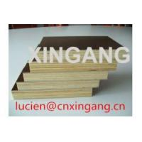 Cheap high quality plywood at best price,cheap plywood,poplar,hardwood,birch veneered plywood,phenolic wbp plywood,E1 plywood for sale