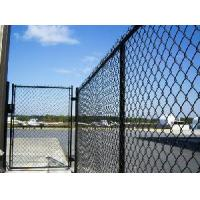 Cheap Vinyl Coated Chain Link Fence for sale