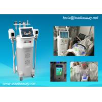 Cheap 5 heads Body weight loss fat freezing equipment / Cryo therapy fat reduction machine for sale