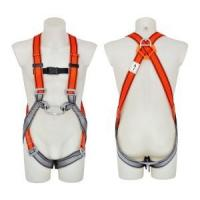 Cheap Safety Harness - 2 D Ring, Model#DHQS102 Polyester for sale