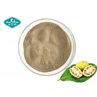 Cheap Dry Place Storage Noni Fruit Powder , Noni Juice Powder For Healthy Body Weight for sale