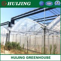 Cheap Factory Price Agricultural/Commercial Plastic Film Poly Tunnel Greenhouse for Tomato for sale