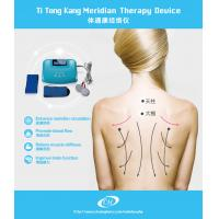 Cheap Meridian Healthcare Digital Therapy Machine , Bio Electric Stimulation Therapy for sale