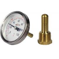 Cheap Bimetal Water Thermometer (BT-W040) for sale