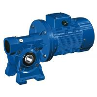 Cheap High Speed Motovario NMRV 040 Worm Gear Reducer / Hollow Shaft Gearbox for sale