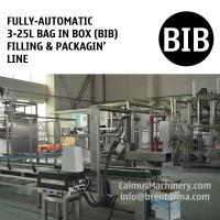 Cheap Fully-automatic 3-25L Bag in Box Water Wine Rum Alcohol Beverage Oil BIB Filling Machine and Packaging Line for sale