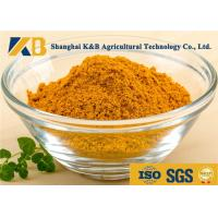 Cheap Natural Dried Fish Powder 60% Protein Content With Healthy Raw Material for sale