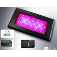 China 55 * 3W LED Growing Lights Metal Housing 4000Lm Greenhouse Agriculture Lighting on sale