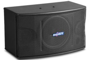 Cheap 10 inch  full range karaoke speaker OK-220 for sale