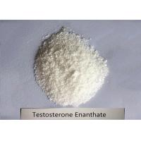Cheap 99% Bodybuilding Steroid Powder Testosterone Enanthate for Muscle Mass CAS 315-37-7 for sale