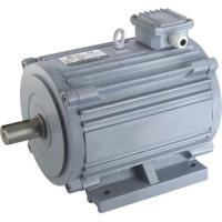 Cheap Horizontal motor with CCC (H140TYD-M) for sale