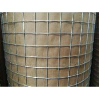 """Cheap 1/2 """" Hot Dip Galvanized Welded Wire Mesh Rolls With 0.8 mm Wire For USA market for sale"""