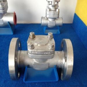China Pressure Seal Flanged Check Valve API 602 / API 598 High Strength Steel on sale