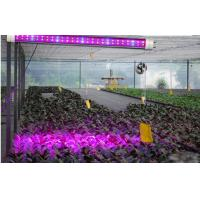 plant grow lights lowes quality plant grow lights lowes. Black Bedroom Furniture Sets. Home Design Ideas