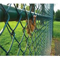 Cheap 40*40MM Dark Green PVC Coated Chain Link Fence for Playground for sale