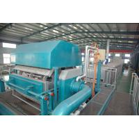 China Pulp Moulding Carton Egg Tray Machine , Fruit Tray Forming Machine on sale