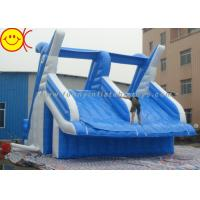 Cheap Giant Dolphin Style Inflatable Water Slide Double Stitching Workmanship for sale