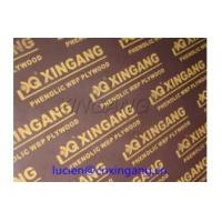 Cheap best plywood for contractor,plywood for quality building,E1,E2 glue plywood,MR plywood,Phenolic Wbp glue plywood for sale