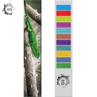 Cheap High Definition Motion 3D Lenticular Ruler Animal Design For Students for sale