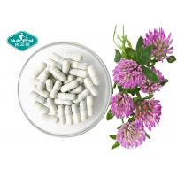 Cheap Organic Dietary Red Clover Extract , Trifolium Pratense Extract For Menopause Support for sale