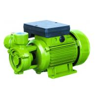 Cheap Electric Water Pumps For Houses , Vortex Water Pump For Hotel Using 0.75HP for sale