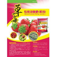 China 15-5-15 Root cell divHarmless Strawberry Dedicated Water Flush Vegetable Garden Fertilizer on sale