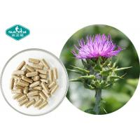 Cheap Pure Milk Thistle Extract Excellent Supports Liver Detoxification Reactions for sale