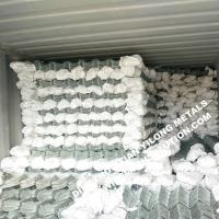 Cheap 50mm Hot Dipped Galvanized Chain Link Fence for Europe Market for sale