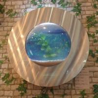 Cheap Porthole Wall Aquarium in Round Style for sale