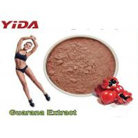 Cheap Guarana Extract Natural Weight Loss Steroids 10% 20% Purity Reduced Appetite for sale