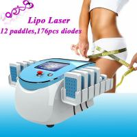 Cheap Lipolaser Dual Wavelength 176 Diodes Fat Dissolving / Slimming Beauty Machine for sale
