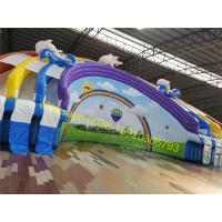 Cheap rainbow giant water slide with pool for sale