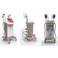 The newest cryolipolysis slimming machine for clinic & spa