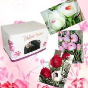 Cheap Flower Printer (Un-Fl-Mn103) for sale