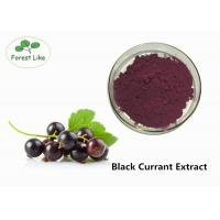 Cheap Anthocyanin Extract / Black Currant Extract Powder 5% Anthocyanins Protect Eye for sale